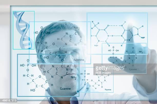 Scientist studying DNA