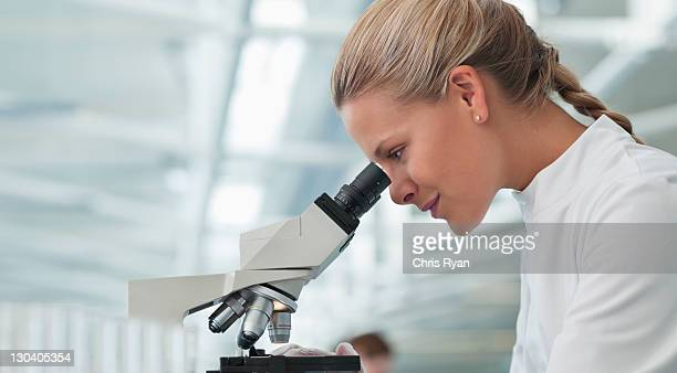 scientist using microscope in lab - microscope stock pictures, royalty-free photos & images