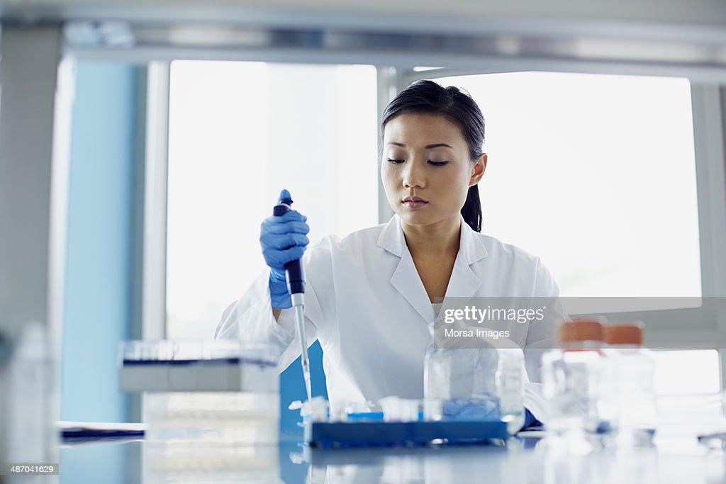 Scientist using pipette in research laboratory : Stock Photo