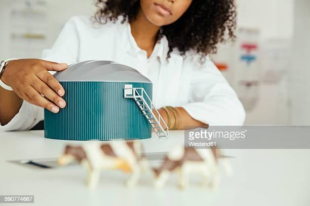 Scientist with biogas plant model in lab
