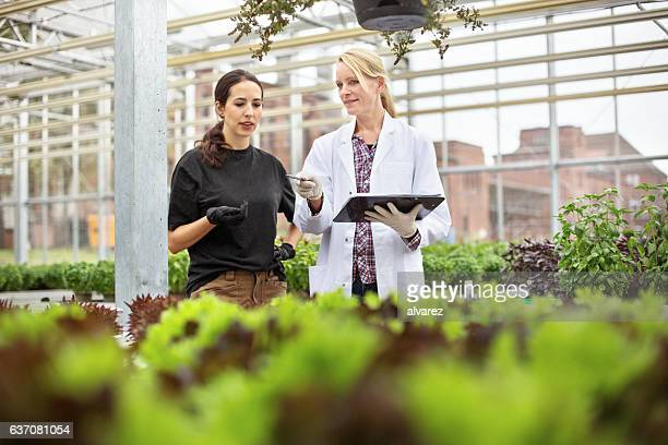Scientist with worker examining plants in greenhouse