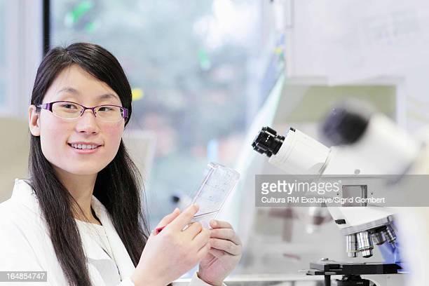scientist working in lab - sigrid gombert stock-fotos und bilder