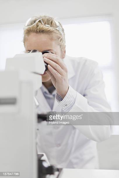 科学者で病理検査作業