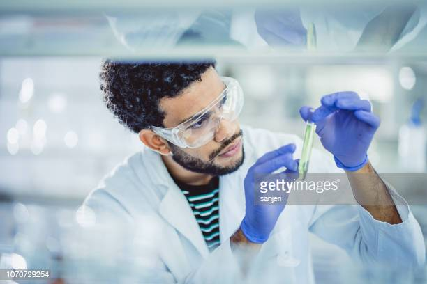 scientist working in the laboratory - oncology stock photos and pictures