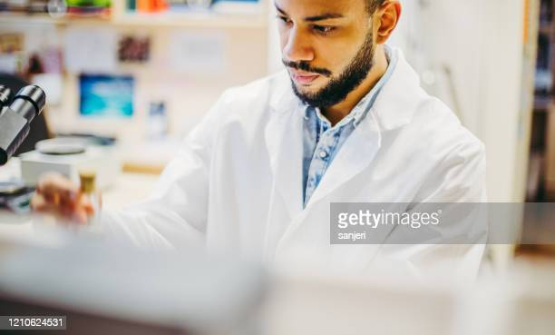 scientist working in the laboratory - genetic research stock pictures, royalty-free photos & images