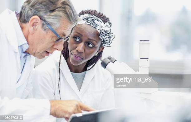 scientist working in the laboratory, using a microscope - carcinoma stock photos and pictures