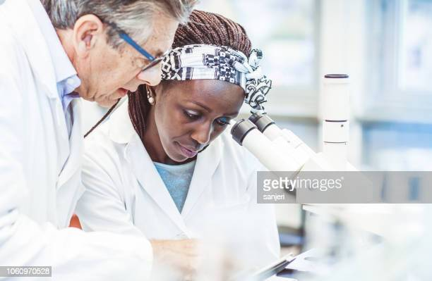 scientist working in the laboratory, using a microscope - hematology stock pictures, royalty-free photos & images