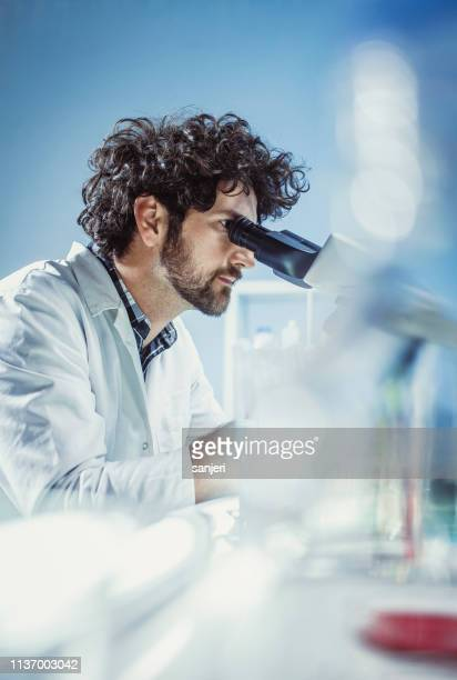 scientist working in the laboratory, using microscope - microbiology stock pictures, royalty-free photos & images