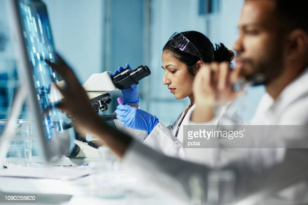 scientist working on computer in  modern laboratory - microscope stock pictures, royalty-free photos & images