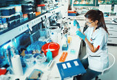 Scientist works in the lab