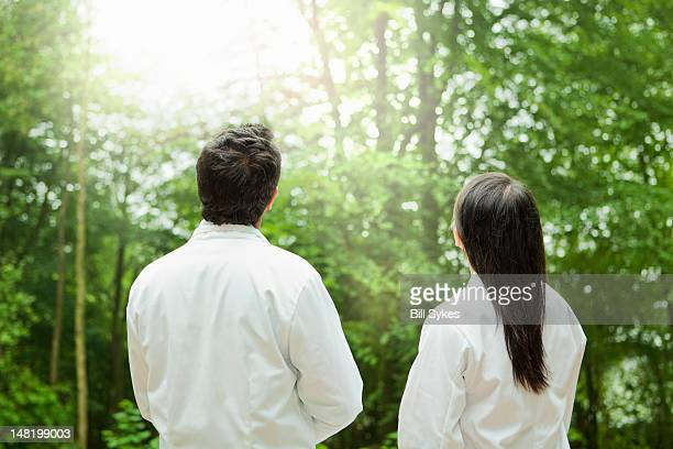 Scientists admiring forest trees