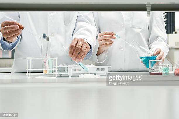 scientists conducting an experiment - chemistry stock pictures, royalty-free photos & images