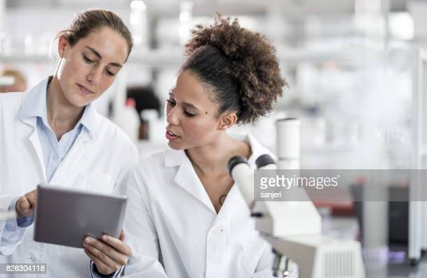 wissenschaftler diskutieren und mit digital-tablette - wissenschaftlerin stock-fotos und bilder