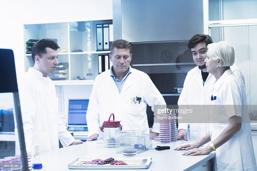 Scientists discussing in laboratory : Stock-Foto