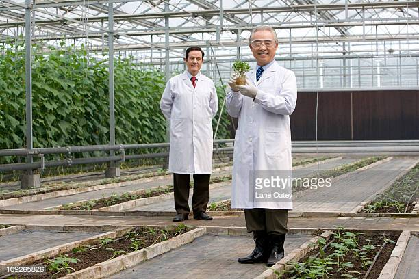 Scientists doing research in modern farm