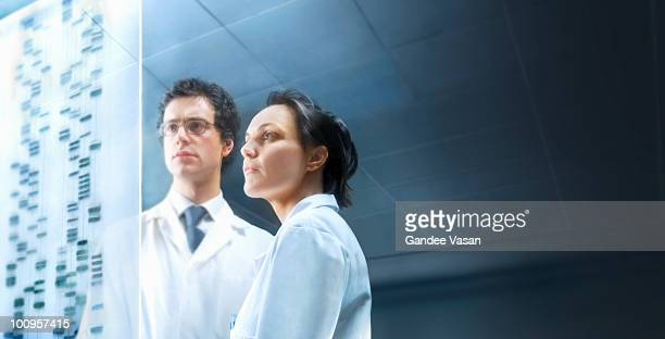 scientists examining dna sequence - gandee stock pictures, royalty-free photos & images