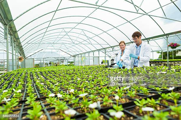 Scientists greenhouse laboratory
