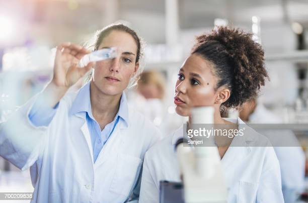 Scientists Looking at a Microscope Slide