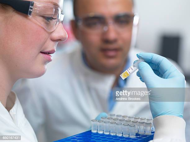 scientists preparing to analyse samples from clinical trial, jenner institute, oxford university - oxford university stock pictures, royalty-free photos & images