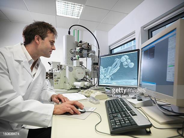 scientists using scanning electron microscope (sem) to look at pollen in biolab - scanning electron microscope stock pictures, royalty-free photos & images