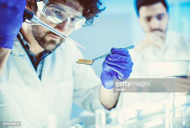 Scientists working at the lab