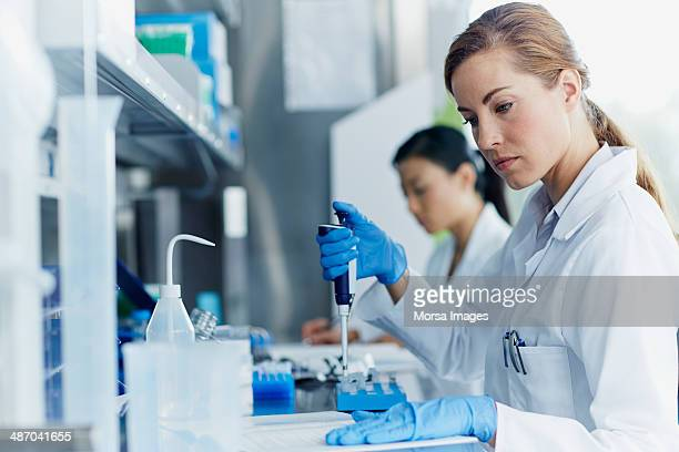 Scientists working in modern laboratory