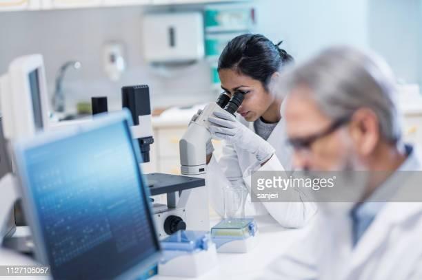 cientistas que trabalham no laboratório - foco seletivo - fotografias e filmes do acervo