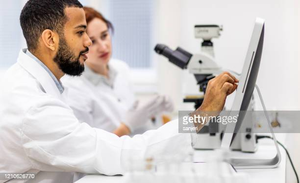 scientists working in the laboratory - microbiologist stock pictures, royalty-free photos & images