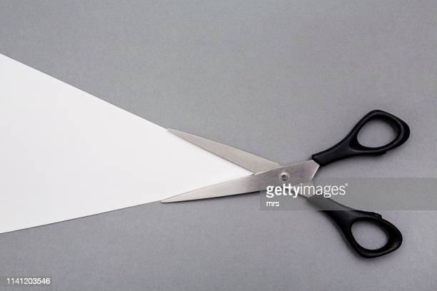 scissors - scissors stock pictures, royalty-free photos & images