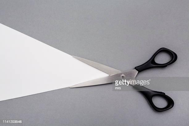 scissors - scissors stock pictures, royalty-free photos & images