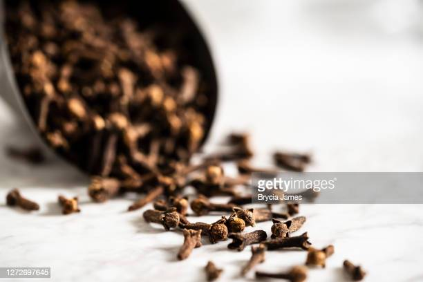 scoop of cloves on a white marble surface - marmo bianco foto e immagini stock