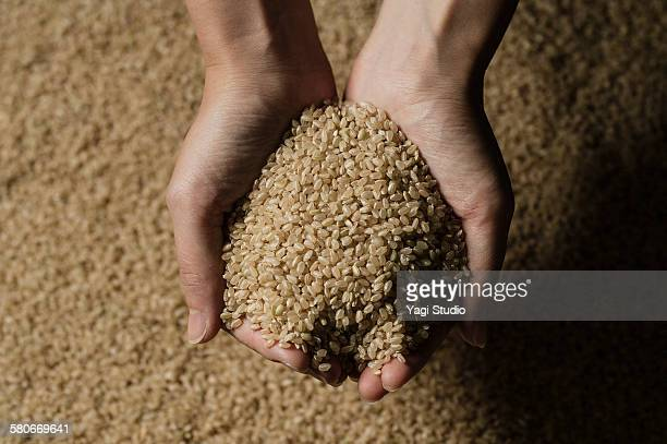 Scoop up the brown rice by hand