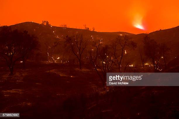 A scorch forest smolders in Placerita Canyon at the Sand Fire on July 24 2016 in Santa Clarita California Tripledigit temperatures and dry conditions...