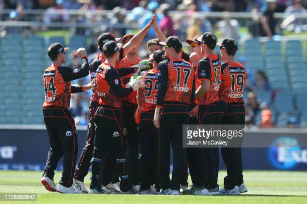 Scorchers players celebrate the dismissal of Alex Carey of the Strikers during the Adelaide Strikers v Perth Scorchers Big Bash League Match at...