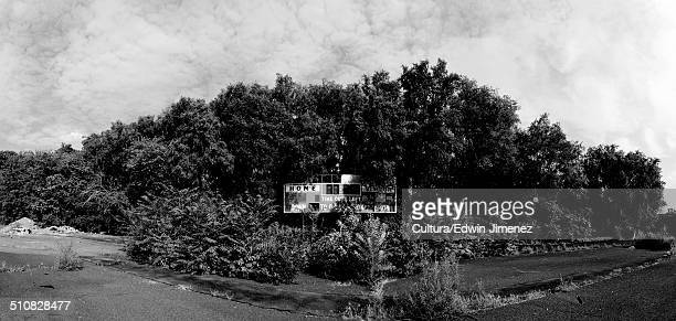 Scoreboard and trees in Hinchliffe Stadium, Paterson, New Jersey, USA