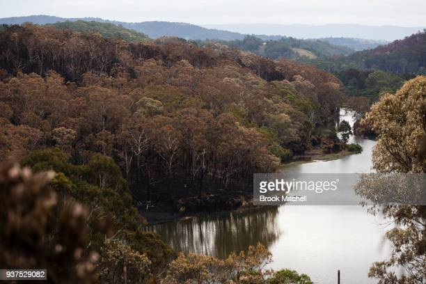Scored bushland on the outskirts of Tathra Australia on March 25 2018 A bushfire which started on 18 March destroyed 65 houses 35 caravans and cabins...