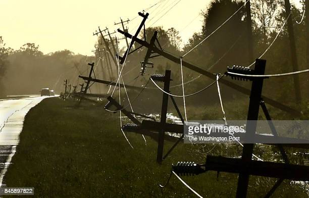 Scores of power lines went down as a result of the high Hurricane Irma winds along Corkscrew Road near Estero Florida The town of Immokalee Florida...