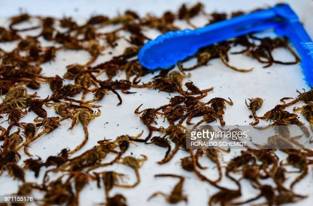 Scorpions are offered at a market in Mexico City on June 10 2018 Some restaurants and markets in Mexico City offer preHispanic dishes such as...
