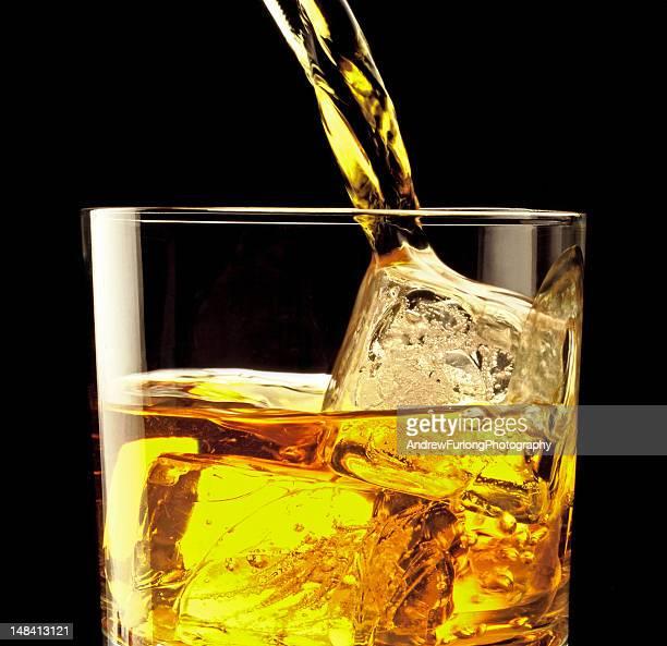 scotch pour - wild turkey bourbon whiskey stock photos and pictures
