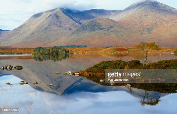 Scotland, Argyll and Bute, Rannoch Moor, Loch Na H Achlaise at Rannoch Moor, Mountains reflected in water with trees growing on small island.