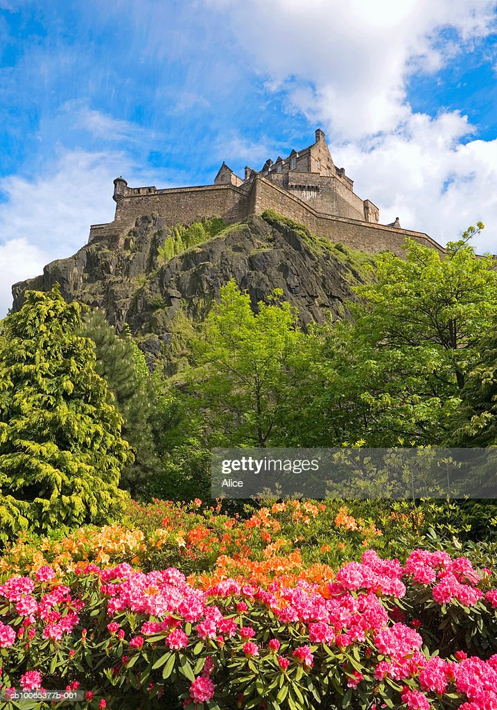 Scotland, Edinburgh Castle from Princes Street Gardens with spring rhododendrons : Foto stock