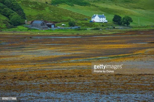 Scotland, Hebrides archipelago, Isle of Skye, Talisker.
