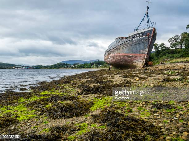 UK, Scotland, Highland, Loch Linnhe, ship wreck at the beach of Corpach