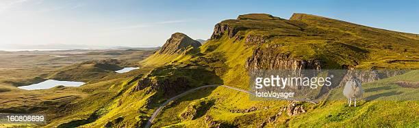 Écosse Highland moutons sur les pittoresques ridge Skye