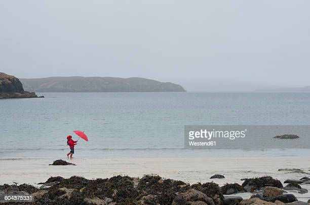 UK, Scotland, Isle of Skye, walking girl with umbrella at rainy and stormy beach