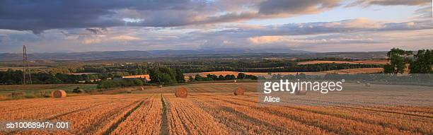 UK, Scotland, Perthshire, Crieff, hay bales in field at sunset