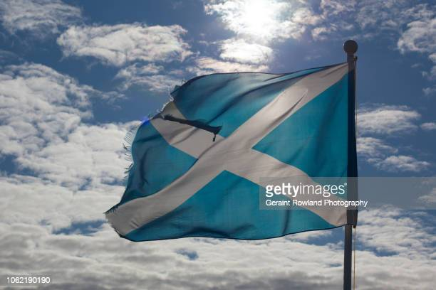 scotland! - political party stock pictures, royalty-free photos & images