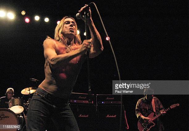 Scott Asheton Iggy Pop and Ron Asheton of Iggy and The Stooges