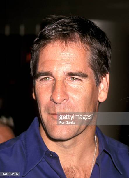 Scott Bakula at the Premiere of 'American Beauty' Egyptian Theatre Hollywood