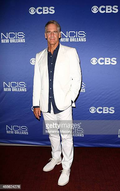 Scott Bakula attends the screening of 'NCIS New Orleans' at the National WWII Museum on September 17 2014 in New Orleans Louisiana